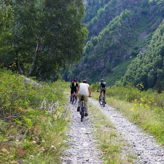 Three bikers on mountain bike track